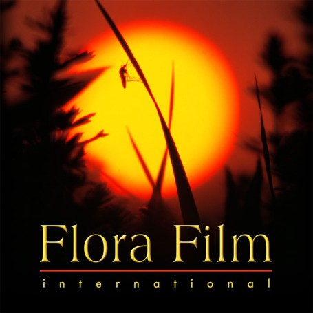 Flora Film International Kft.